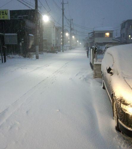 2014-yuki-2.jpg